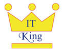 King IT Solutions - Website Designing company in Ludhiana - website designers in Punjab